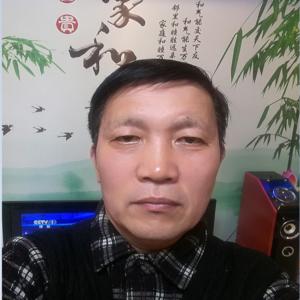 张德清:副会长
